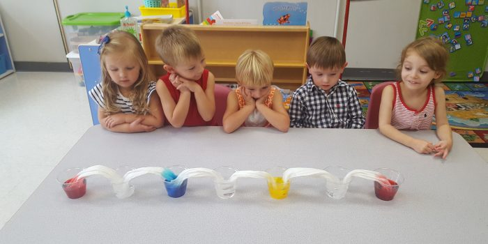 Preschoolers at a table mixing colors